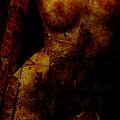 Venicia by Su Ferguson - Don Burkheimer
