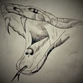 Venom by Nathan Pierce