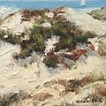 Ventura Dunes I by Barbara Andolsek