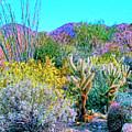 Verdant Spring Mohave Desert by Dominic Piperata