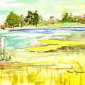 Vereen Marsh by Nancy Brennand