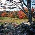 Vermont Autumn by John Scates