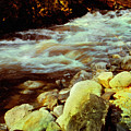 Vermont Brook by Frank Wilson