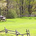 Vermont Buck Board by Deborah Benoit