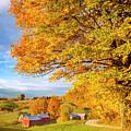 Vermont Farm by Brian Jannsen
