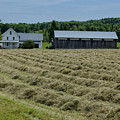Vermont Farmhouse With Hay by Donna Doherty