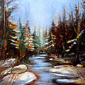 Vermont Stream by Carole Spandau