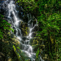 Vernal Fall At Rincon De La Veija by Rikk Flohr