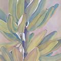 Vertical Banana Bunch by Carol McDonald