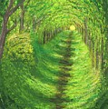 Vertical Tree Tunnel by Stephen Riffe