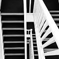 Vertigo  by Des Marquardt