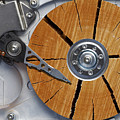 Very Old Hard Disc by Michal Boubin