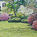 Veterans Park Blossoms by Richard Nowak