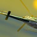 Vh Lee Flying In The Sun by Miroslava Jurcik