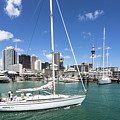 Viaduct Harbor In Auckland, New Zealand by Didier Marti