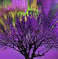 Vibrant Tree by Gull G