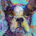Vibrant Whimsical Boston Terrier Puppy Dog Painting by Svetlana Novikova
