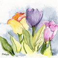 Vickis Tulip by Marsha Woods
