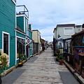 Victoria British Columbia Fisherman's Wharf by Charles Robinson