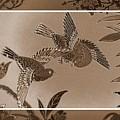 Victorian Birds In Sepia by Carol Groenen