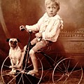 Victorian Boy With Pug Dog And Tricycle Circa 1900 by Peter Gumaer Ogden
