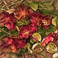 Victorian Rose Delight 14 by Lynda Lehmann