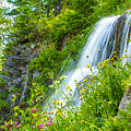 Vidae Falls, Oregon by Tirza Roring