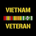 Vietnam Veteran Ribbon Bar  by War Is Hell Store