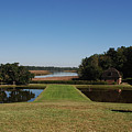 View Down To The Ashley River At Middleton Place Plantation Charleston by Susanne Van Hulst
