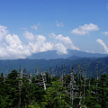 View From Clingman's Dome by Nancy Mueller