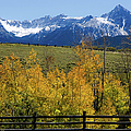 View From Hwy 62, Ouray County, Co by John Bartelt