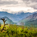 View From Eielson by Claudia Abbott