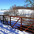 View From The Bridge by Debbie Oppermann