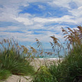 View From The Outer Banks Dunes by Francis Sullivan
