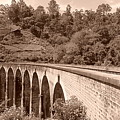 View Of Ancient Bridge by Mohan
