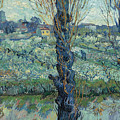 View Of Arles, Flowering Orchards by Vincent van Gogh