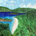 View Of Beach In St John Us Virgin Islands  by Lee Serenethos