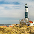 View  Of Big Sable Point Michigan by Nick Zelinsky