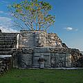 View Of Cerros Maya Ruins At Cerros by Panoramic Images