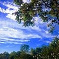 View Of Countryside In Frederick Maryland In Summer by Debra Lynch