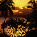 View Of Fiji by Larry Dale Gordon - Printscapes