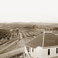 View Of Foothill Orchards. This View Of Orchards In The Foothill by California Views Mr Pat Hathaway Archives