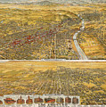 View Of Los Angeles, 1894 by Granger