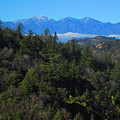 View Of Mount Baldy From The San Bernardino Mountains by Julia Hanna