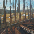 View Of Parkers Creek by Suzanne Shelden