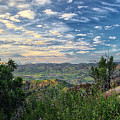 View Of Simi Valley by Endre Balogh