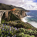 View Of The Bixby Creek Bridge Big Sur California by George Oze