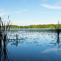 View Of The Lake Enajarvi by Ismo Raisanen