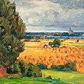 View Of Vadstena From The Surrounding Fields by Prins Eugen