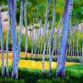 View Through Aspen by Johnathan Harris